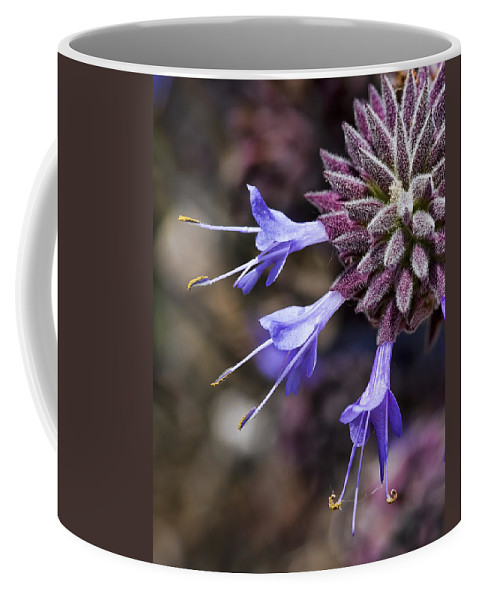 Purple Flowers Coffee Mug featuring the photograph Fuzzy Purple Detail 1 by Kelley King