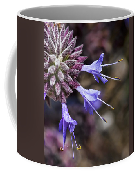 Macro Flowers Coffee Mug featuring the photograph Fuzzy Purple Detail 2 by Kelley King