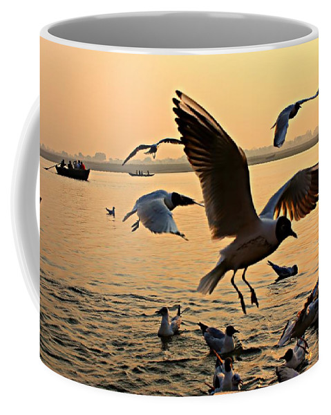 Gulls Coffee Mug featuring the photograph Ganges River Gulls by Amanda Stadther