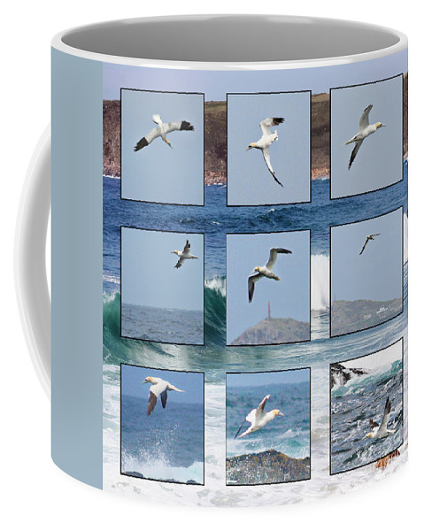 Gannet Coffee Mug featuring the photograph Gannets Galore by Terri Waters