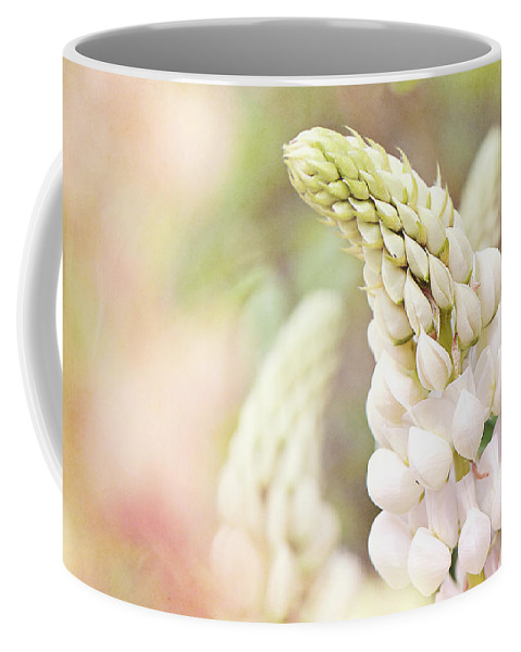 Interior Design Coffee Mug featuring the photograph Garden Ballet by Lisa Knechtel