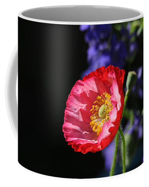 Poppies Coffee Mug featuring the photograph Garden Delight by Lynn Bauer