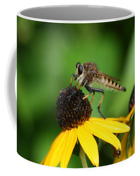 Insect Coffee Mug featuring the photograph Garden Fly by Marty Fancy