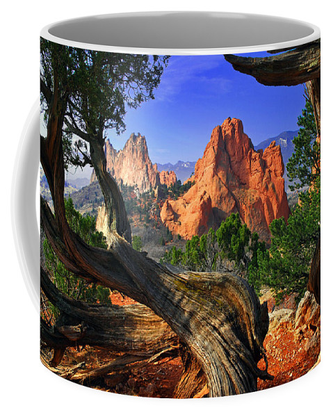 Garden Of The Gods Coffee Mug featuring the photograph Garden Framed By Twisted Juniper Trees by John Hoffman