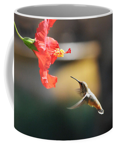 Hibiscus Coffee Mug featuring the photograph Garden Glow by Lynn Bauer