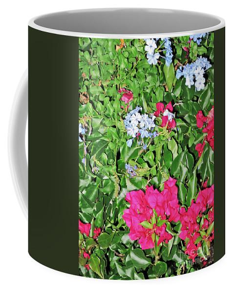 Travel Coffee Mug featuring the photograph Garden Of Austria by Elvis Vaughn