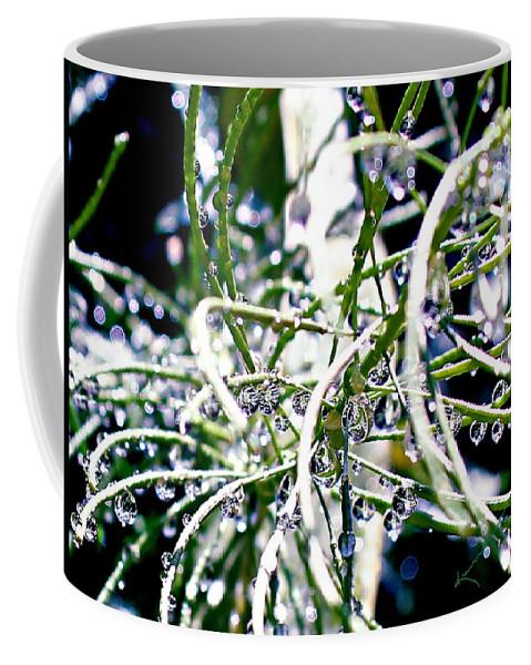 Garden Coffee Mug featuring the photograph Garden Orbs by Kume Bryant