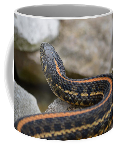 Snake Coffee Mug featuring the photograph Garter Snake by Bonfire Photography