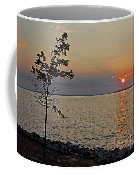 Scenic Tours Coffee Mug featuring the photograph Gathering Light by Skip Willits