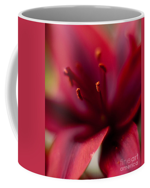 Red Coffee Mug featuring the photograph Gazer Red Angles by Mike Reid