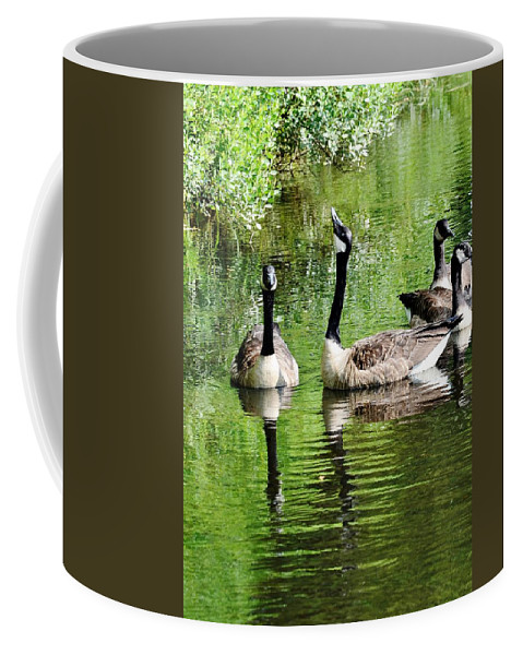 Bird Coffee Mug featuring the photograph Geese And Green by Kim Bemis