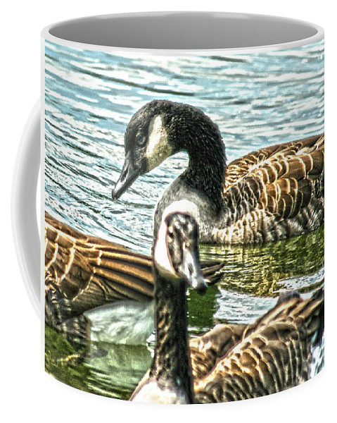 Canadian Goose Coffee Mug featuring the photograph Geese On The Pond II by Lesa Fine