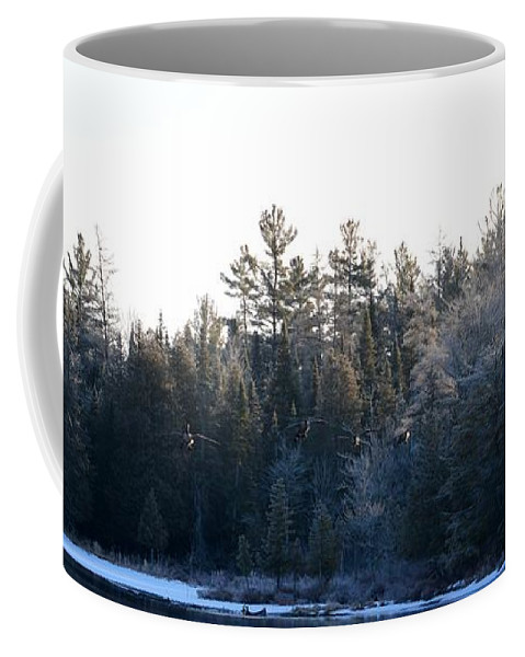 Geese Coffee Mug featuring the photograph Geese by Thomas Phillips