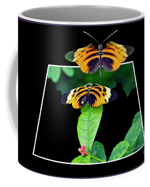 Mating Coffee Mug featuring the photograph Gentle Butterfly Courtship 01 Out Of Bounds by Thomas Woolworth