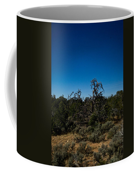 Ghost Coffee Mug featuring the photograph Ghost Tree Of The West by Douglas Barnett