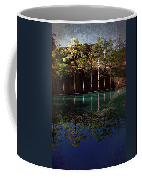 Water Garden Coffee Mug featuring the photograph Ghostly Quiet by Joan Carroll