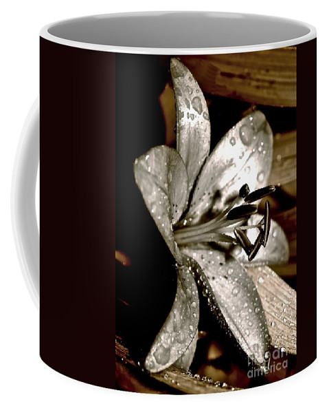 Lily Coffee Mug featuring the photograph Gilded Lilies 3 by Linda Bianic