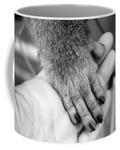 Michelle Meenawong Coffee Mug featuring the photograph Gimme Five by Michelle Meenawong