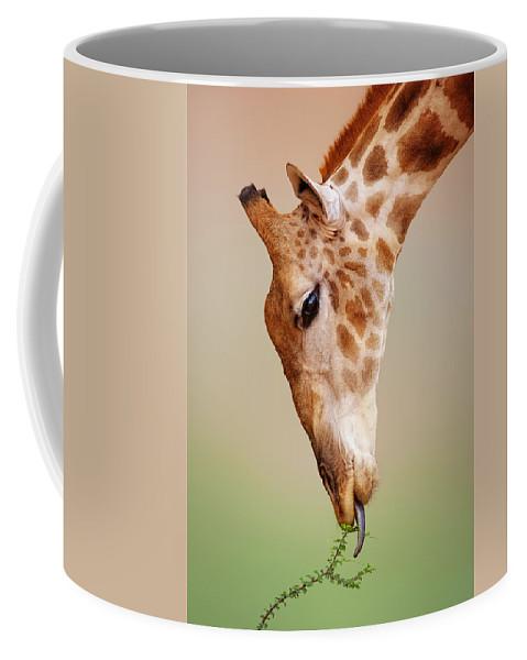 Giraffe Coffee Mug featuring the photograph Giraffe eating close-up by Johan Swanepoel