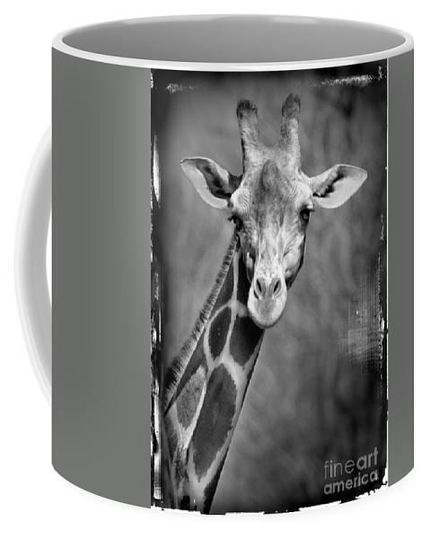 Giraffe Coffee Mug featuring the photograph Giraffe Face In Black And White by Jill Battaglia