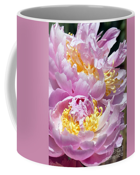 Pink Coffee Mug featuring the photograph Girly Girls by Lilliana Mendez