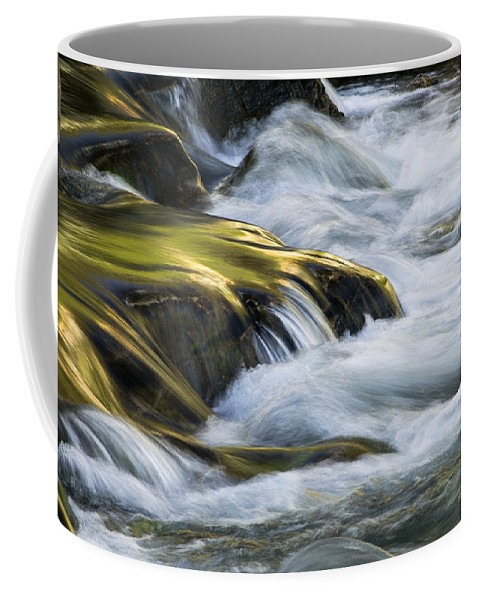 Glacier National Park Coffee Mug featuring the photograph Glacier Stream 2 Glacier National Park by Rich Franco