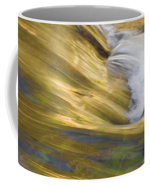 Glacier National Park Coffee Mug featuring the photograph Glacier Stream Glacier National Park by Rich Franco