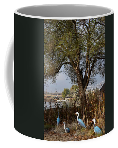 Melba Coffee Mug featuring the photograph Go To The River by Image Takers Photography LLC - Carol Haddon
