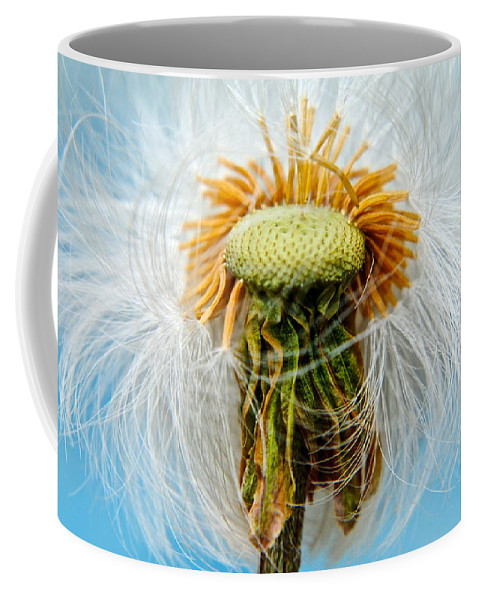 Dandelion Coffee Mug featuring the photograph Going Bald by Frozen in Time Fine Art Photography