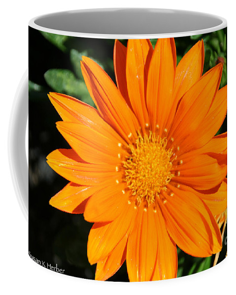 Flower Coffee Mug featuring the photograph Gold Ring by Susan Herber
