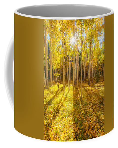 Aspens Coffee Mug featuring the photograph Golden by Darren White