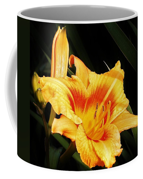 Flora Coffee Mug featuring the photograph Golden Dawn by Bruce Bley