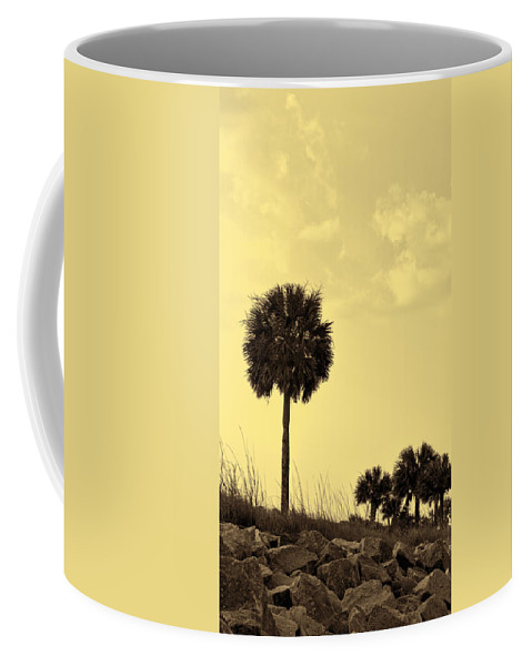 Silhouette Coffee Mug featuring the photograph Golden Palm Silhouette by Kathy Clark