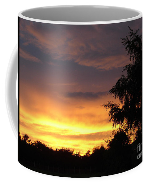 Sunset Coffee Mug featuring the photograph Golden Sunset 3 by Carol Lynch