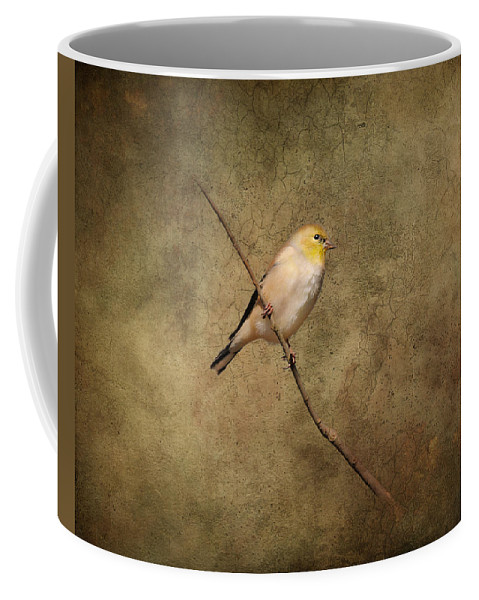 Gold Finch Coffee Mug featuring the photograph Goldfinch Portrait by Jai Johnson