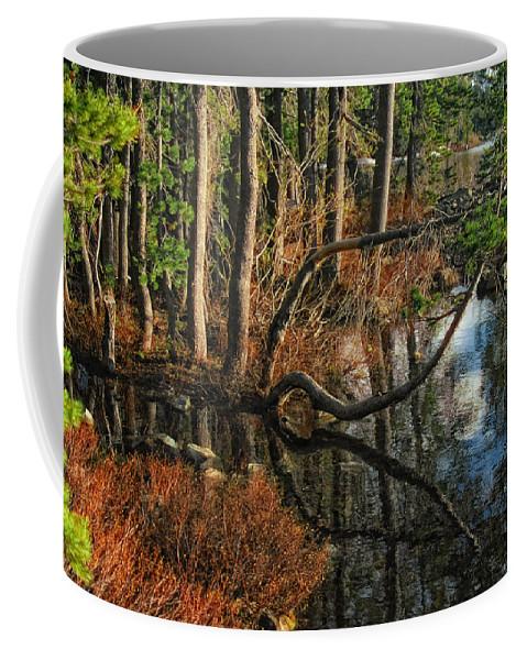 Goose Lake Coffee Mug featuring the photograph Goose Lake Twilight by Donna Blackhall