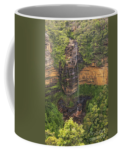 Blue Mountains Australia Mountain Tree Trees Plant Plants Landscape Landscapes Waterfall Waterfalls Wentworth Falls Water Rock Rocks Coffee Mug featuring the photograph Wentworth Waterfall by Bob Phillips