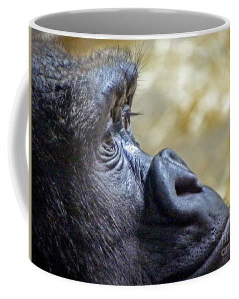 Gorilla Coffee Mug featuring the photograph Gorilla Contemplating by Charlene Gauld