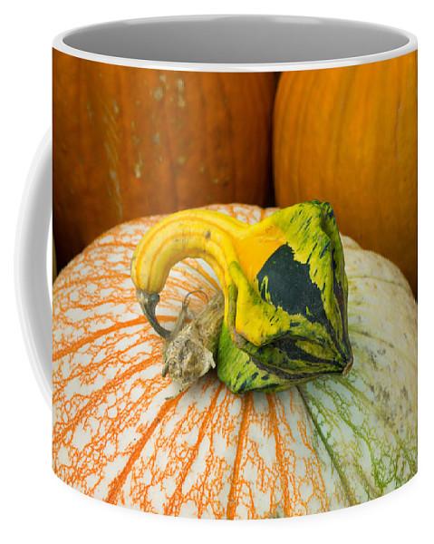Gourd Coffee Mug featuring the photograph Gourd Pair by Douglas Barnett