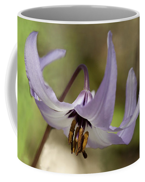 Fawn Lily Coffee Mug featuring the photograph Graceful Fawn Lily by Betty Depee