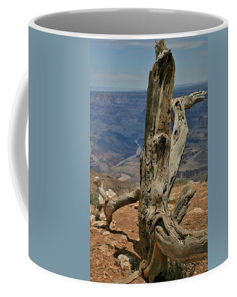 Grand Canyon Coffee Mug featuring the photograph Grand Canyon And Dead Tree 2 by Mo Barton