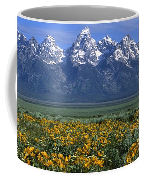 Grand Teton Coffee Mug featuring the photograph Grand Teton Summer by Sandra Bronstein