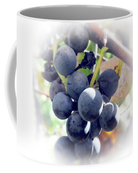 Grapes Coffee Mug featuring the photograph Grapes On The Vine by Kathleen Struckle