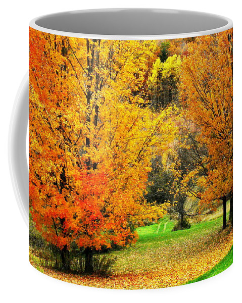 Trees Coffee Mug featuring the photograph Grassy Autumn Road by Rodney Lee Williams