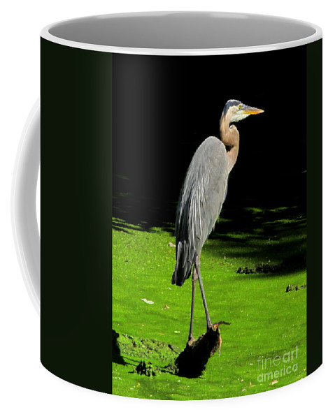 Great Blue Heron Photographs Wading Birds Of America Wetland Wildlife Images Wetland Birds Blue Heron Images Water Birds American Wetland Biodiversity Conservation Natural Science Educational Resources Coffee Mug featuring the photograph Great Blue Heron by Joshua Bales