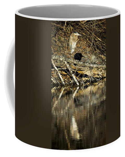 Heron Coffee Mug featuring the photograph Great Blue Heron Reflection by Belinda Greb
