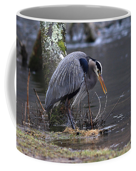 Coffee Mug featuring the photograph Great Blue On The Clinch River II by Douglas Stucky