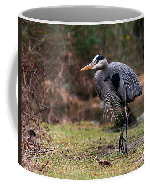 Coffee Mug featuring the photograph Great Blue On The Clinch River IIi by Douglas Stucky