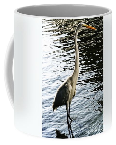 Egrets Coffee Mug featuring the photograph Great Egret No. 2 by Belinda Greb