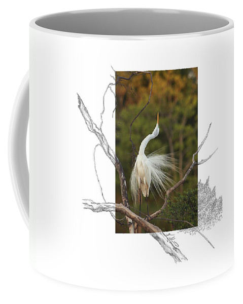 Great Egret Coffee Mug featuring the photograph Great Egret - Stretch by Andrew McInnes